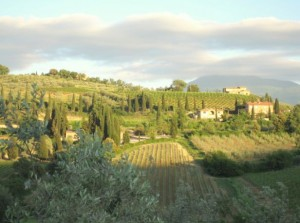 Florence Tuscany wine tour 300x223 Tuscanys specialty   winery tours in Florence