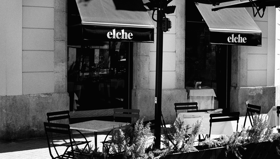 elche The Best Paellas in Barcelona!