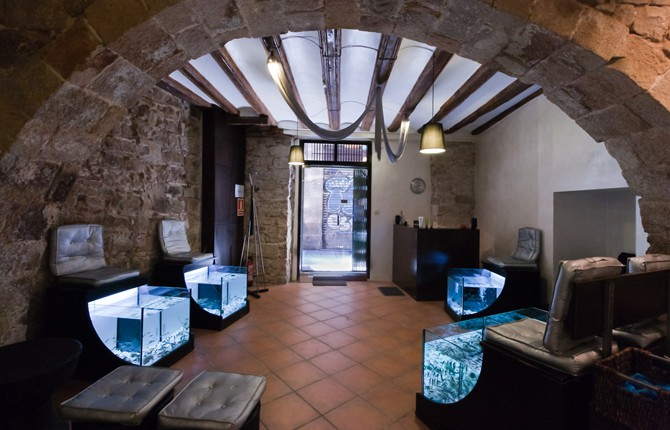 rufoo-fish-spa-barcelona